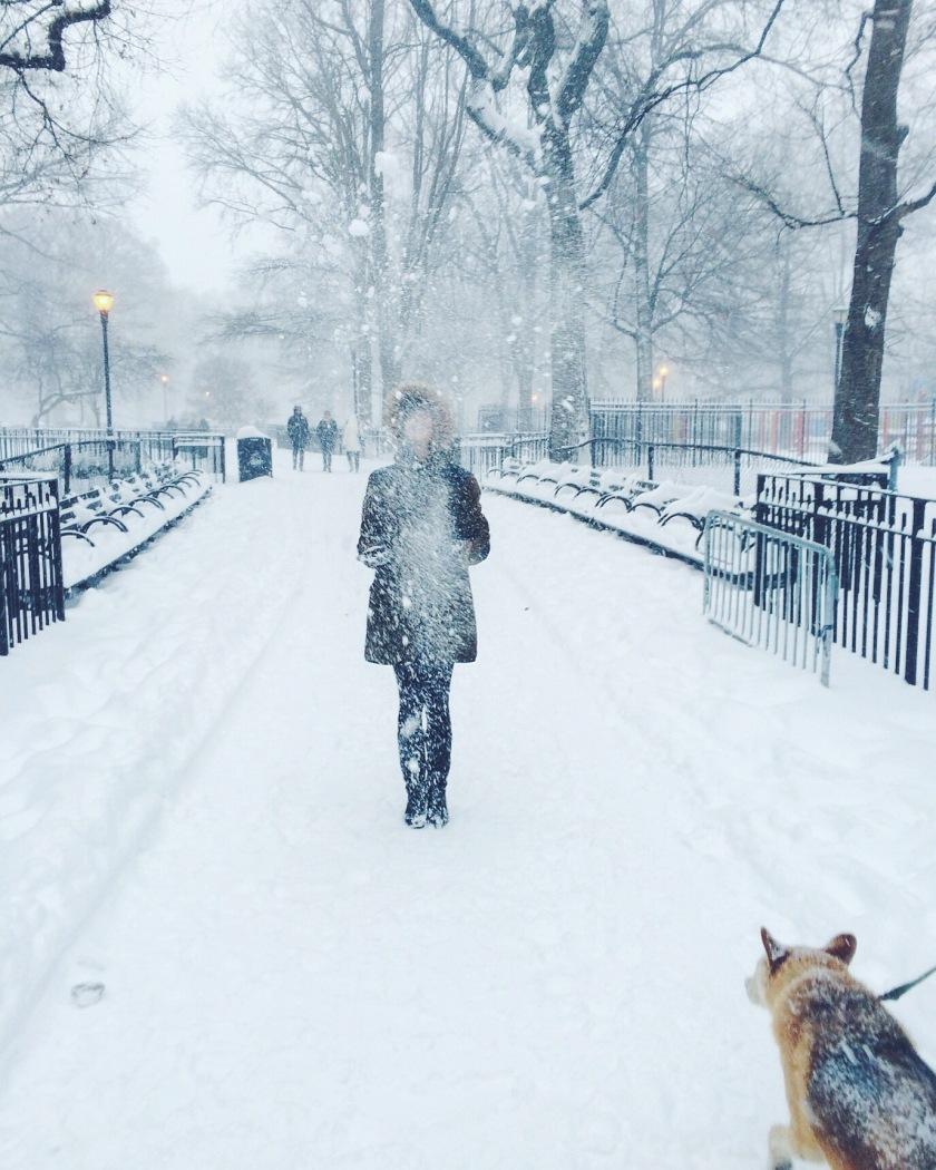 snow storm 2016